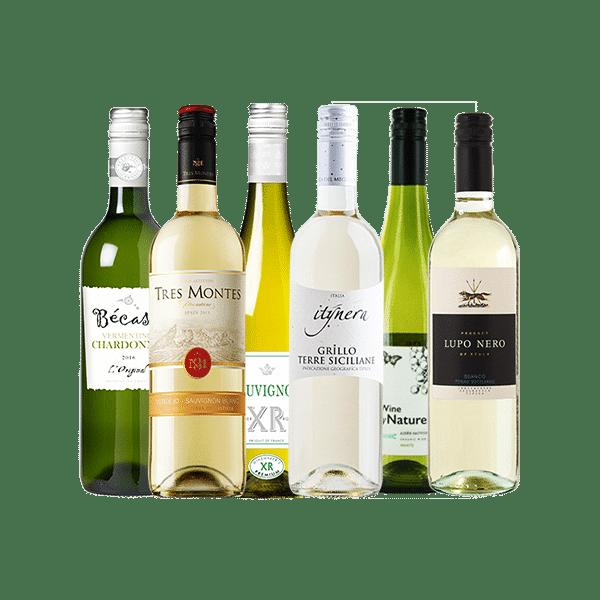 Wijnpakket Wit – Fris & Droog (6 flessen)