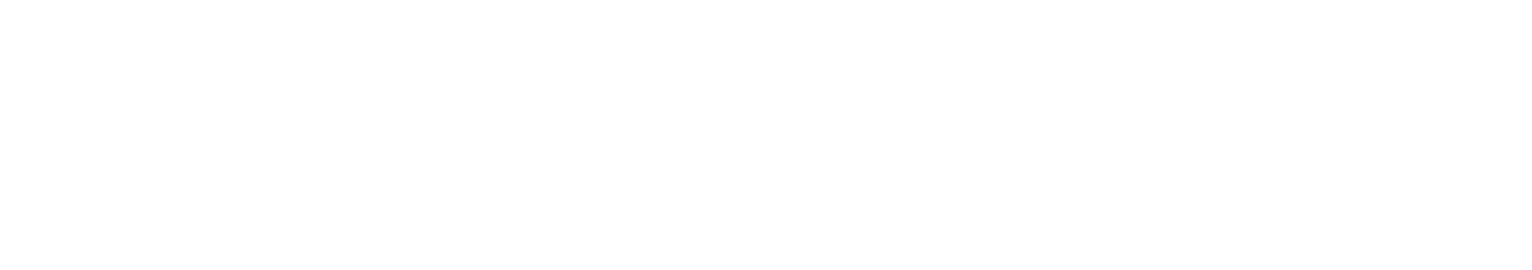 wijnexpress-logo-footer
